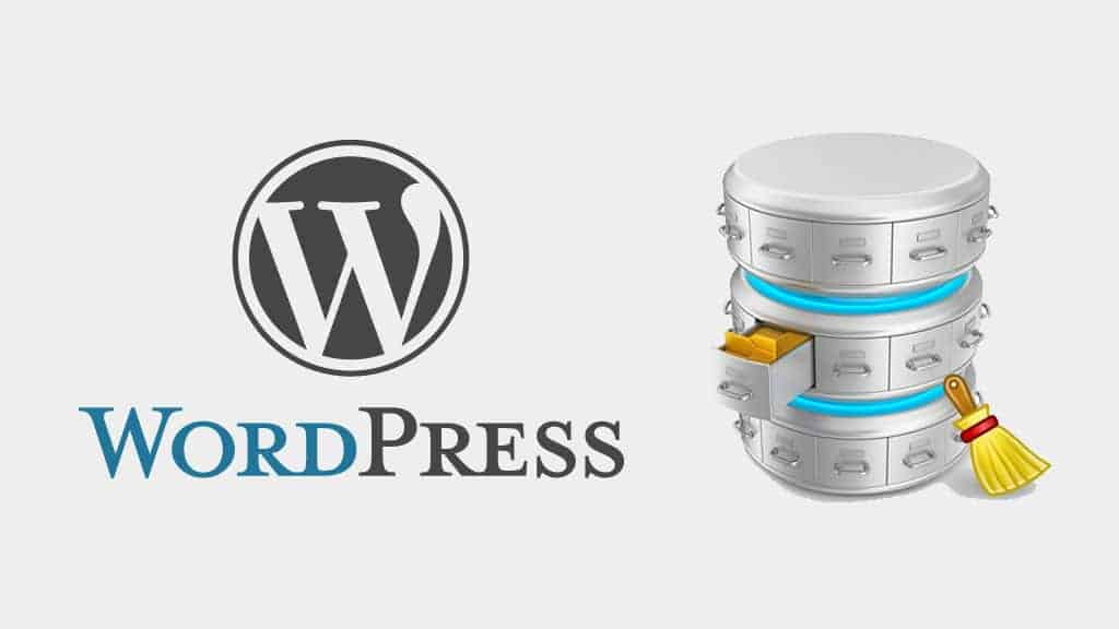 WordPress : résoudre le problème de la table wp_options à qui manquent une colonne Unique et une Primary Key photo