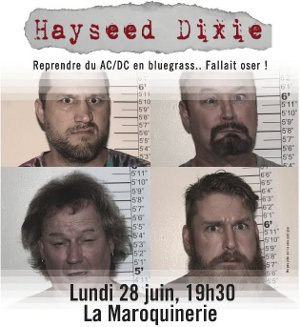 concert_20100628-hayseed-dixie-poster