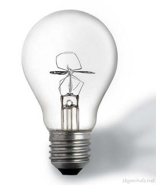 Mosquito Bulb
