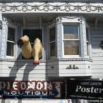 """San Francisco bus : over the top house-front (aka """"legs!"""")"""
