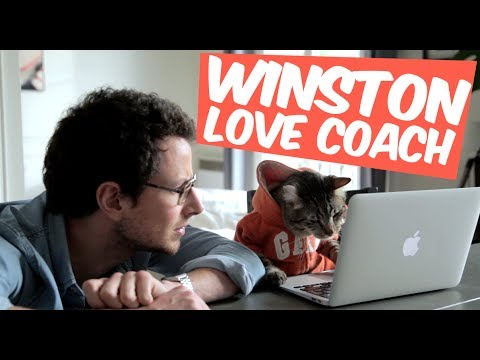 Winston love coach : la drague virtuelle photo